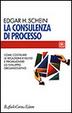 Cover of La consulenza di processo