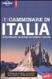 Cover of Camminare in Italia
