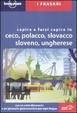 Cover of Capire e farsi capire in ceco, polacco, slovacco, sloveno, ungherese