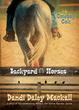 Cover of Cowboy Colt