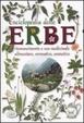 Cover of Nuova enciclopedia delle erbe. Riconoscimento e uso medicinale alimentare, aromatico, cosmetico