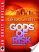Cover of Gods of Risk