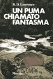 Cover of Un puma chiamato fantasma