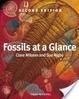 Cover of Fossils at a Glance