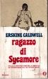 Cover of Ragazzo di Sycamore