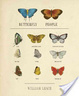 Cover of Butterfly People