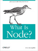 Cover of What Is Node?