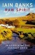 Cover of Raw Spirit