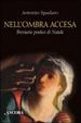 Cover of Nell'ombra accesa. Breviario poetico di Natale