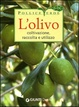 Cover of L'olivo