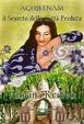 Cover of Aghjkenam Il segreto della città perduta