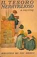 Cover of Il tesoro meraviglioso