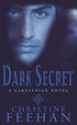Cover of Dark Secret
