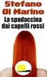 Cover of La spadaccina dai capelli rossi