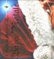 Cover of Il mondo magico di Babbo Natale