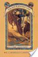 Cover of Il carosello carnivoro