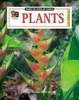 Cover of Plants