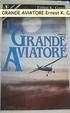 Cover of Il grande aviatore
