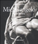 Cover of Michelangelo scultore