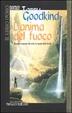 Cover of L'anima del fuoco