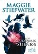 Cover of Los saqueadores de sueños