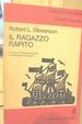 Cover of Il ragazzo rapito