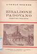 Cover of Zibaldone Padovano