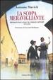 Cover of La scopa meravigliante