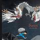 Cover of Sann