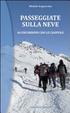 Cover of Passeggiate sulla neve. 44 escursioni con le ciaspole
