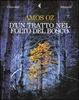 Cover of D'un tratto nel folto del bosco