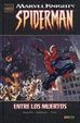 Cover of Marvel Deluxe. Marvel Knights: Spiderman #1