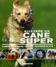 Cover of Allevare un cane super. Come liberare le sue potenzialità