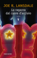 Cover of La ragazza dal cuore d'acciaio