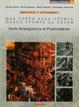 Cover of Dal testo alla storia dalla storia la testo. Edizione modulare 3/1