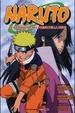 Cover of Naruto - La primavera nel paese della neve