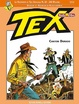Cover of Tex Speciale stella d'oro n. 20