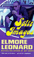 Cover of Split Images