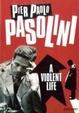 Cover of A Violent Life