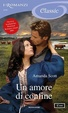 Cover of Un amore di confine
