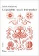 Cover of Lo splendore casuale delle meduse