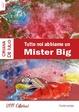 Cover of Tutte noi abbiamo un Mister Big