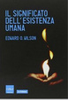 Cover of Il significato dell'esistenza umana