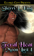 Cover of Feral Heat