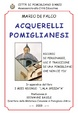 Cover of Acquerelli pomiglianesi