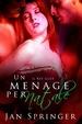 Cover of Un ménage per Natale