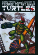 Cover of Teenage Mutant Ninja Turtles vol. 3