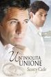 Cover of Un'insolita unione