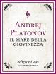 Cover of Il mare della giovinezza