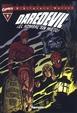 Cover of Biblioteca Marvel: Daredevil #9 (de 22)